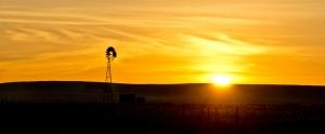 Sunrise over the Plains, CC license Wayne Dallemore
